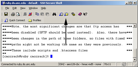 Secure Shell window