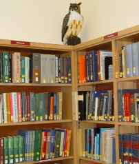 Owl statue and reference books