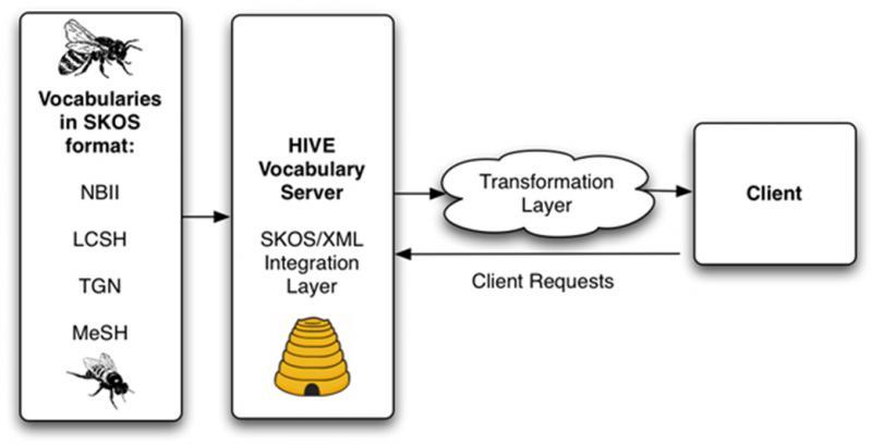 HIVE model